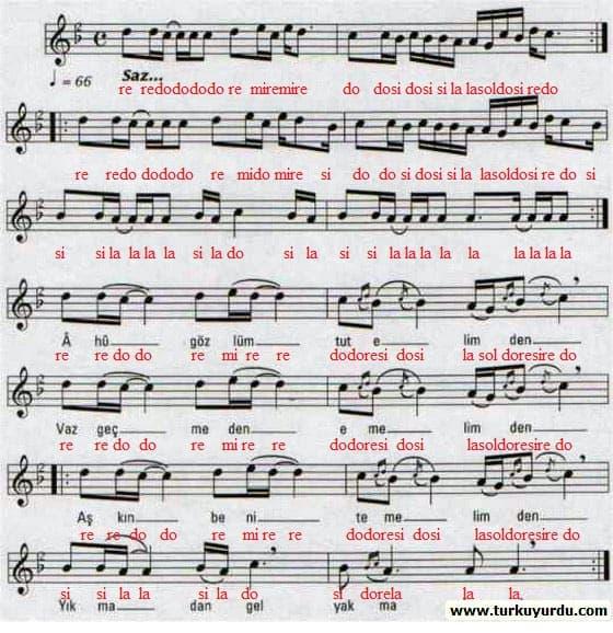 ahu-gozlum-nota